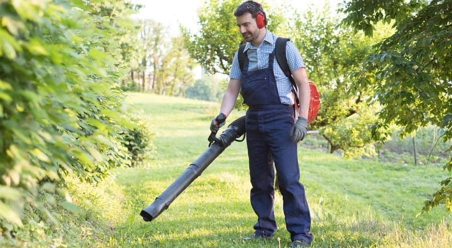 Best Backpack Leaf Blower for the Money