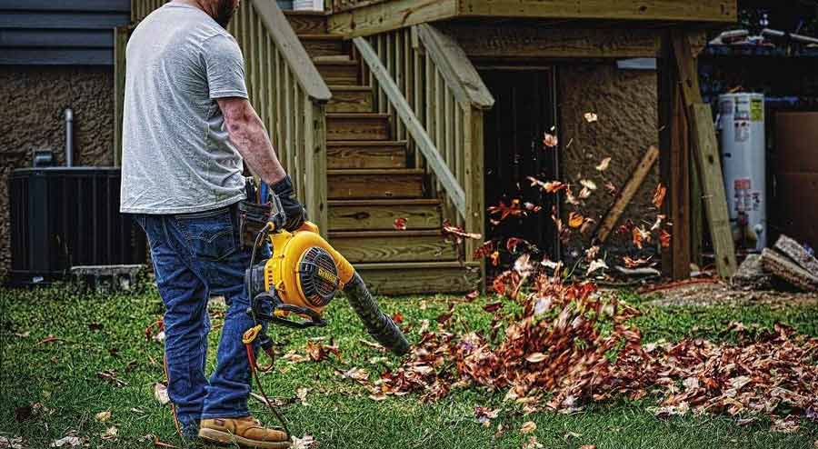 The 5 Best Electric Leaf Blower Reviews & Buyers Guide 2018
