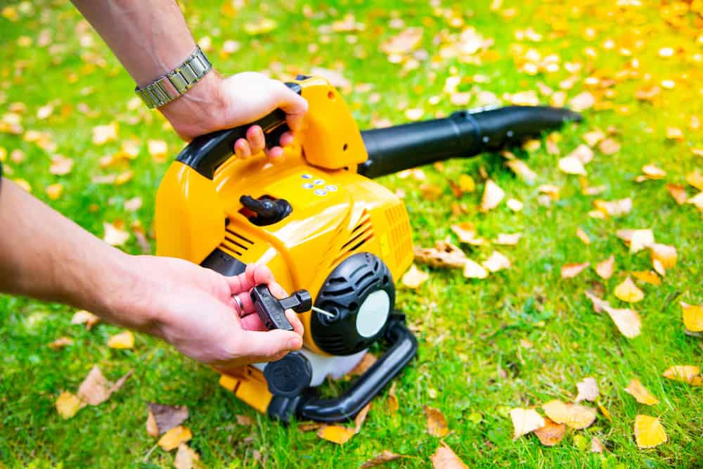 best cordless leaf blower and trimmer