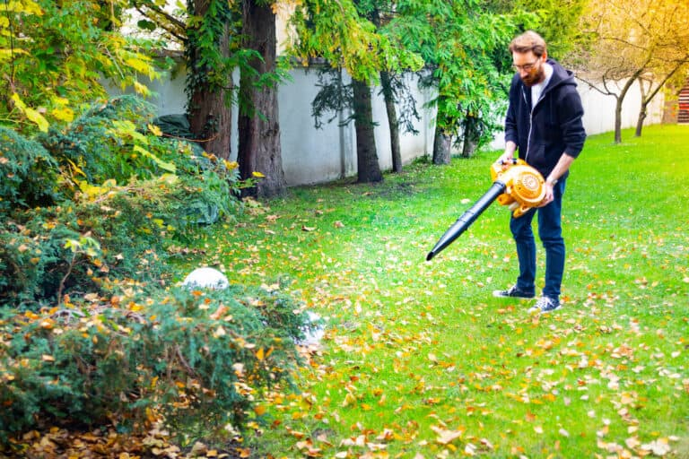 best leaf blower for home use