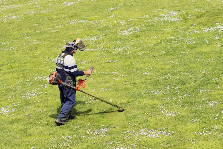 best weed wacker for large yard