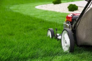 What Are the Best Brands of Lawn Mowers?