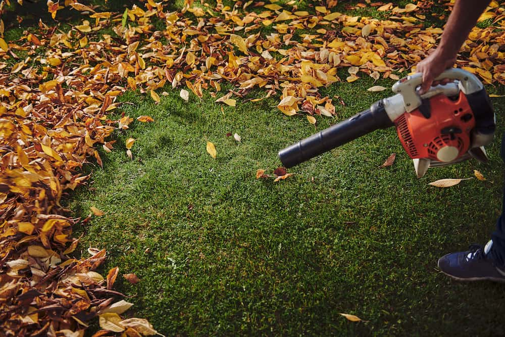 what is a good cfm for a leaf blower at home