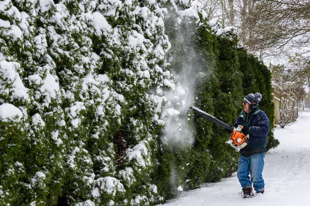 can you use a leaf blower for snow