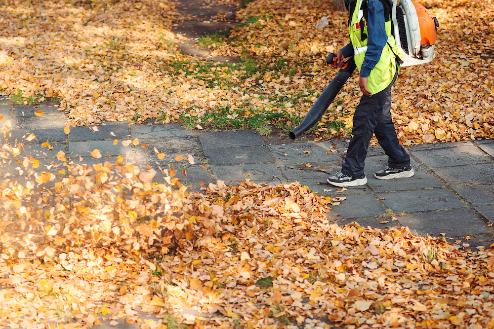 do you know how does a leaf blower work?