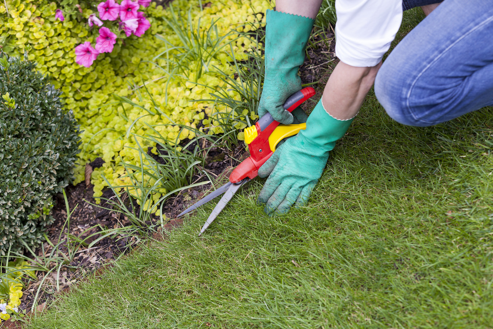 how to edge a lawn without an edger